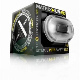 Max & Molly Matrix Ultra LED ohutusvilkur teeb sinu koera pimedas märgatavaks